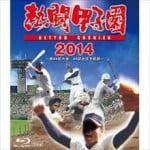 安住紳一郎 高校野球中継とプロ野球中継の決定的な違いを語る