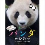 安住紳一郎が語る 和歌山パンダの愛の昼メロドラマ