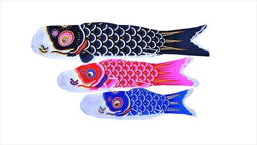 安住紳一郎 憧れの鯉のぼりを語る