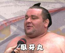 玉袋筋太郎 一押し力士 臥牙丸のかわいい魅力を語る