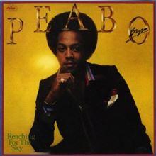 松尾潔 R&B定番曲解説 Peabo Bryson『Feel The Fire』