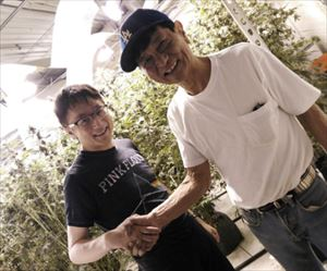 町山智浩 合法化決定後のカリフォルニア大麻ショップレポート