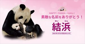 安住紳一郎 和歌山赤ちゃんパンダ「結浜」名前予想的中を語る