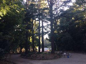 ハライチ岩井 地獄の入口・駒場公園を語る