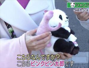 安住紳一郎 上野パンダ・シャンシャン公開初日のメディア対策を語る