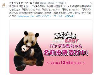 安住紳一郎と中澤有美子 2018年和歌山パンダ赤ちゃん命名最終候補を語る