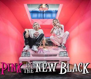 鳥居咲子と菊地成孔 Ja Mezz feat. SALU『Pink is the New Black』を語る