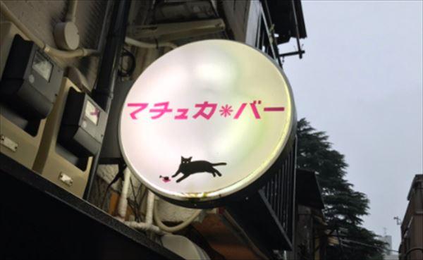 尾崎世界観 ゴールデン街マチュカ・バーのオンライン配信を語る