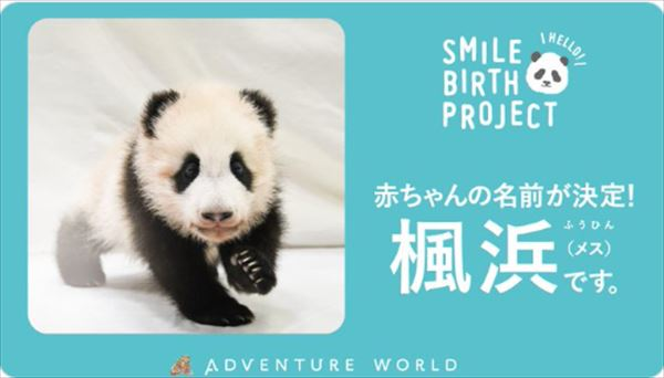 安住紳一郎 2021年和歌山パンダ赤ちゃん名前予想の結果を語る