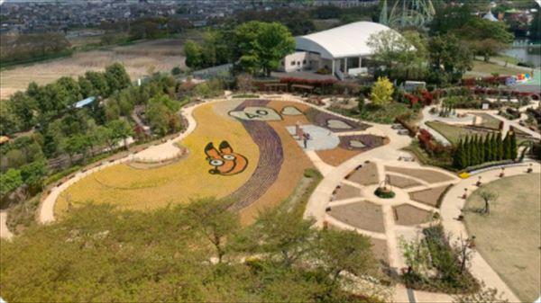 ハライチ岩井 東武動物公園の垂直すべり台を語る